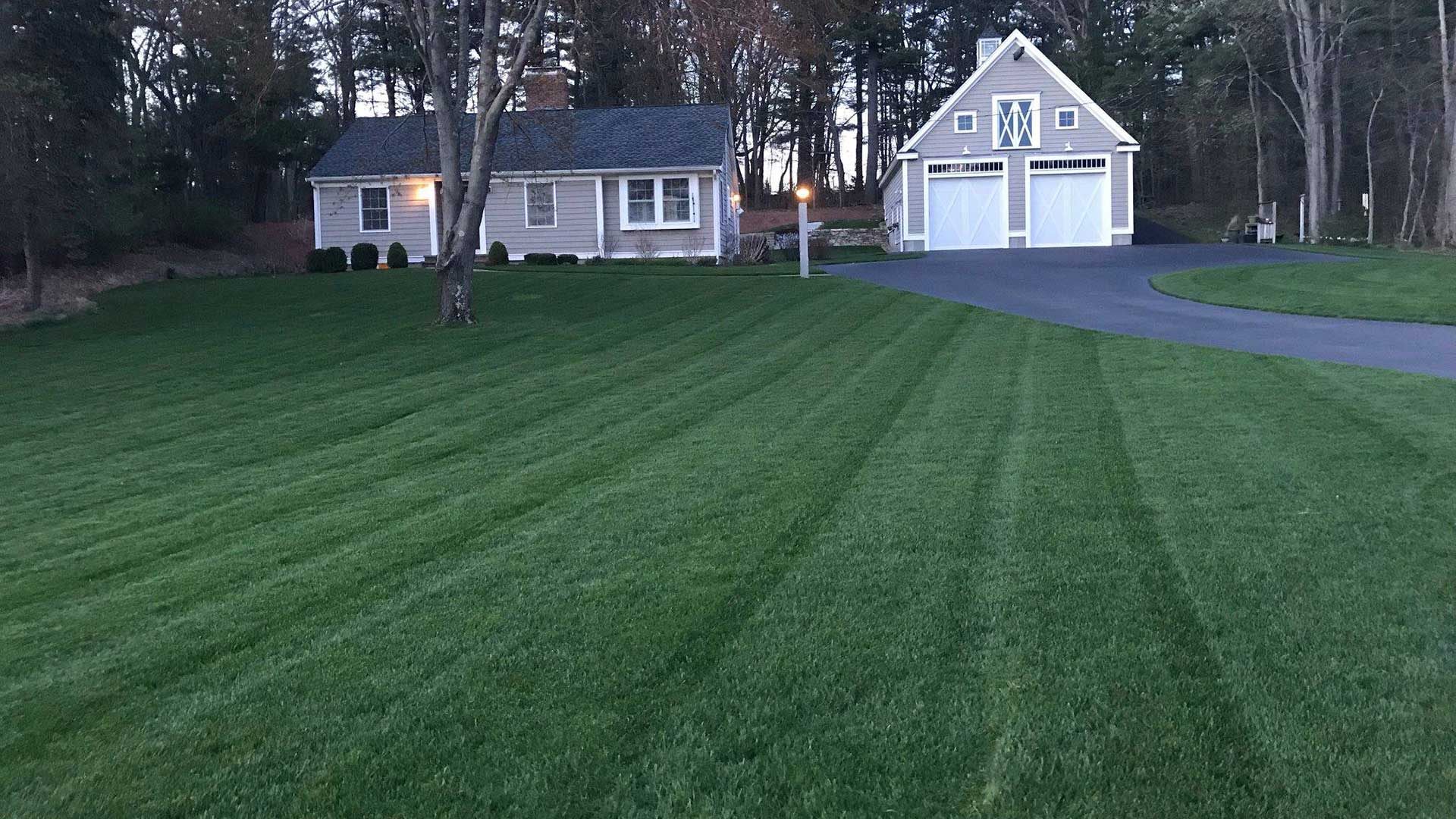 A front yard in Lunenburg, MA that we have treated for many years.