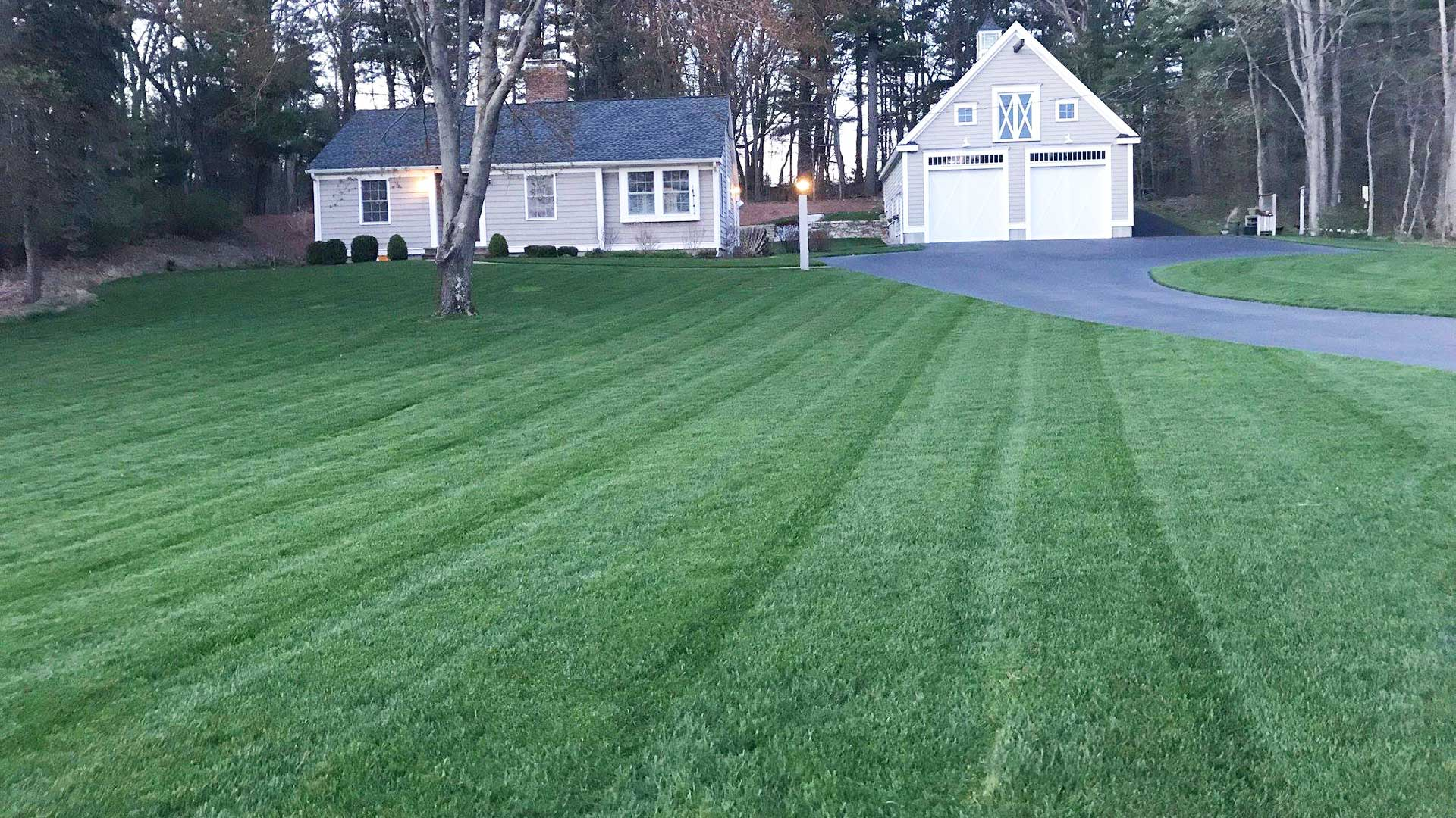 A happy, healthy lawn in Concord, MA.