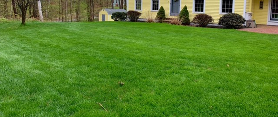 This home's lawn is lush and green thanks to our company's hydroseeding services in Leominster, MA.