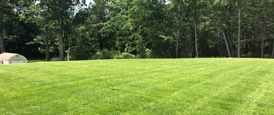 Our company can keep your Lunenburg lawn looking healthy and green with our fertilization services.
